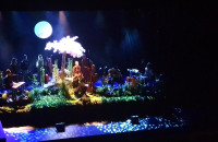 Koncert Anity Lipnickiej