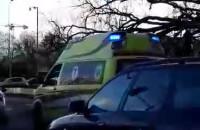 Przywrócone drzewo, uszkodzony sygnalizator