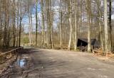 Pustki w gdyńskich lasach. Ludzie stosują się do zakazów