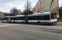Zdublowane autobusy 150 wróciły na pętlę na Witominie