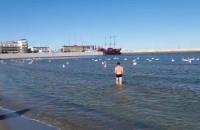 Kąpiel w morzu w Gdyni? Dlaczego nie