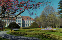 Piękny wiosenny Park Oliwski