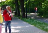 Dziki przechadzają się po Sopocie