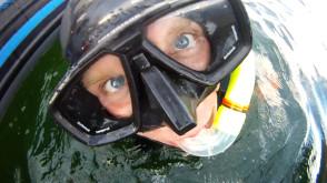 Nurkowie sprzątali gdyńskie wybrzeże 2011