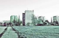 Narracje 2011. Natura Miasta - trasa wycieczek