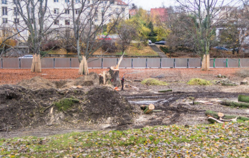 Ruszyła budowa Parku Centralnego