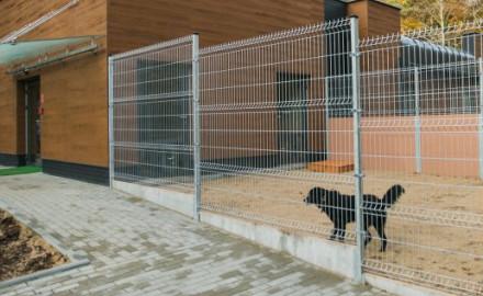 Psy z Ciapkowa mają nowy pawilon
