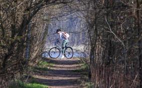 Powstanie nowa droga rowerowa na Wyspie Sobieszewskiej