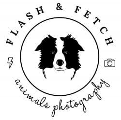 Flash&Fetch