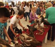 Bałtycki Festiwal Nauki kusi atrakcjami