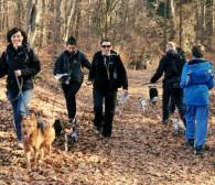 Aktywuj się z psem podczas dogtrekkingu