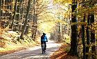 Szlaki rowerowe Pomieczyńskiej Huty