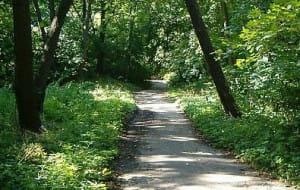 Kamery w Parku Brzeźnieńskim będą, ale dopiero jesienią