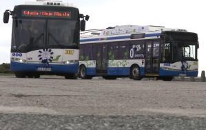 Kolejne dwa trolejbusy bez szelek w Gdyni