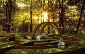 Nowy pomysł na ogród botaniczny w Gdyni
