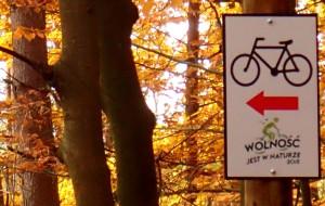Szlak rowerowy w Lasach Otomińskich