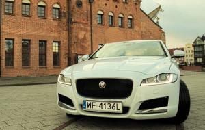 Jaguar XF: kocur, który wygląda znajomo