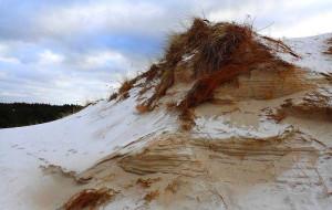Zimowa wędrówka przez Wydmy Lubiatowskie
