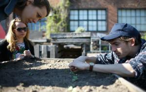 Ogródek stoczniowy i warsztaty roślinne w Buffecie