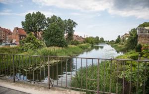 Jaka przystań na kanale Na Stępce? Gdańsk analizuje oferty