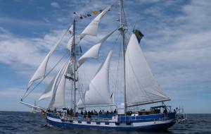 Święto żeglarstwa w Gdańsku. Rusza Baltic Sail