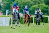 Wyścigi konne, zakłady i konkursy w Sopocie
