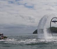 Latają nawet 20 metrów nad wodą