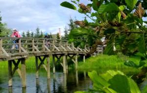Zaborski Park Krajobrazowy i okolice