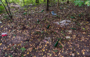 Mieszkańcy posprzątają zaniedbany park w Orłowie