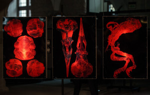 Sztuka umierania. Nowa wystawa w Zbrojowni