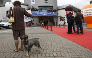 34. Festiwal Filmowy w Gdyni. Przewodnik kinomana.