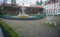 Trawa w Parku Oliwskim ofiarą sukcesu...