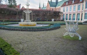 Trawa w Parku Oliwskim ofiarą sukcesu iluminacji