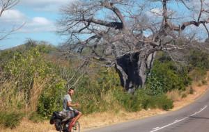 Weganin rowerem przez trzy kontynenty