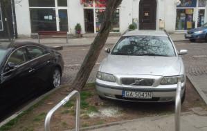 Gdynia: jak skończyć z samowolą parkingową?