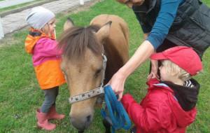 Trwa rekrutacja do przedszkola i szkół Lingwista
