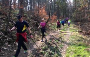 Niemal 500 osób poszło w las dla zwierzaków