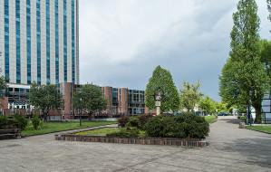 Pomysły na zapomniany plac w Gdańsku