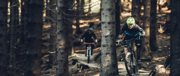 Przetestuj darmowo rowery Kross