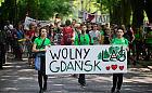 W niedzielę marsz w obronie trójmiejskich lasów