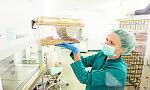 Tu nowe leki testują na zwierzętach.