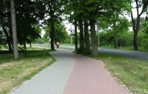 Nowa droga rowerowa na Wyspie Sobieszewskiej w tym roku