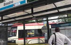 Policja i straż miejska będą wspomagać kontrolerów biletów