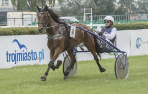 W Sopocie odbyło się 13 gonitw konnych