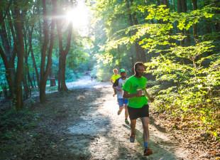 Letnia edycja cyklu biegów przełajowych City Trail