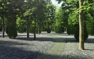 Sopot poprawi zieleń i mur oporowy
