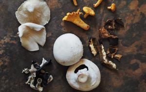 Okiem dietetyka: dlaczego warto jeść grzyby?