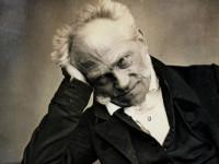 Patroni tramwajów: Arthur Schopenhauer