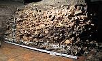 Badają 80 tys. kości dawnych mieszkańców Gdańska