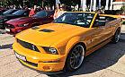 Do Sopotu przyjechało 80 Mustangów